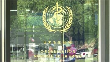 WHA復會 美駐UN大使發布影片讚台防疫貢獻