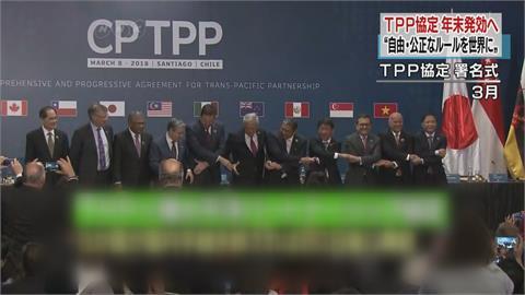 日駐台副代表指出 台灣入CPTPP過於樂觀