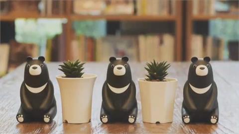 台股新高!鋼鐵人.航海王熱 中鋼紀念品「台灣黑熊」賣萌