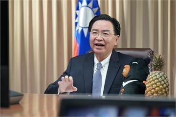快新聞/出席跨國議會聯盟視訊會議 吳釗燮不忘推銷展示台灣鳳梨