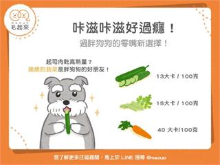 【肥胖狗貓飲食】咔滋咔滋好過癮!過胖狗狗的零嘴新選擇!|寵物愛很大