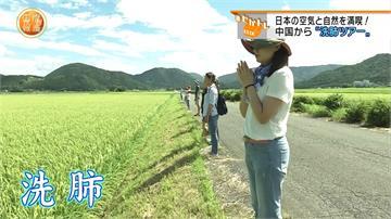 霧霾太嚴重!中國遊客蜂擁赴日本進行「洗肺之旅」