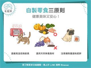 【狗貓餵養知識】自製零食三原則,健康美味又安心!|寵物愛很大