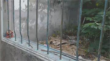 天花板塌陷 房間長滿雜草旅居中國回家後變廢墟