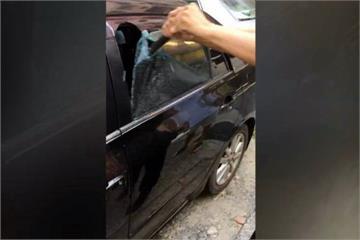 2歲童反鎖車內 母問警:破哪塊窗較便宜?