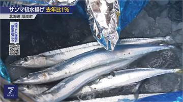 日本秋刀魚荒 首批漁船返港捕撈量只剩去年1%