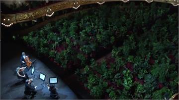 西班牙解封後辦音樂會 安排2292盆植物當觀眾