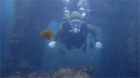 微解封仍停業 龍洞灣立槳、潛水業者喊快撐不下去了