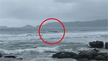 金山舢舨船滿載「千尾烏魚」翻覆 3人落海衝浪客熱心救援