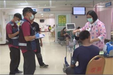 夏令營驚動虎頭蜂蜂巢  四學童被螫送醫