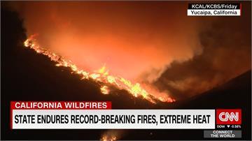 準備嬰兒焰火趴樂極生悲 燒毀7千英畝森林