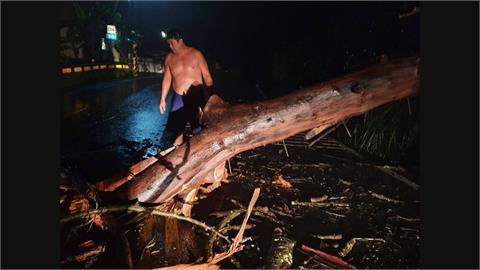 山區樹斷橫倒阻交通 轄區勇警雨夜裸身鋸樹