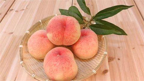 水蜜桃成熟時…劃對2刀「完美去籽」 如何挑選桃子?不藏私大公開