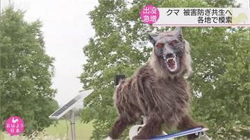 日本黑熊出沒事件頻傳 驅熊不殺熊成新趨勢