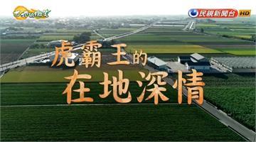 大糧倉計畫啟動!「虎霸王」品牌推廣落花生產品|土地的微笑|EP24