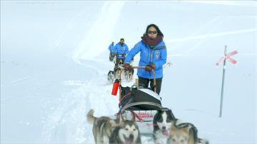業餘雪橇犬大賽登場  參賽者完成極地長征落淚