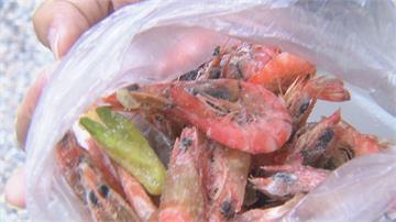 殭屍蝦?一斤700元活蝦 煮後蝦頭全黑了