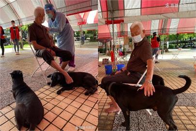 快新聞/自己的阿公自己顧! 高雄80歲阿公打疫苗毛孩全程緊跟陪伴