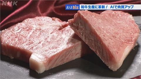 AI科技培育頂級和牛 日本畜牧業新生機!