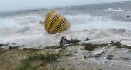 盧碧挾狂風暴雨襲日!草間彌生「南瓜」遭吹入海「裂成兩半」畫面曝