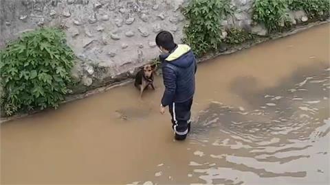 溼透發抖! 小狗墜大排 動物防疫所順利救援