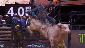 錢難賺!職業騎野牛團體挑戰賽 高風險下討生活