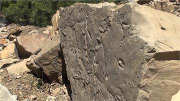 路邊落石藏有千萬年前化石!武陵師生單車環島意外發現