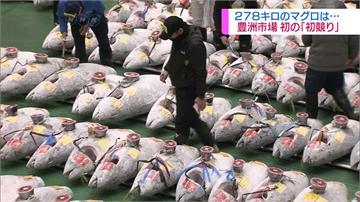 史上最高價!日本豐洲黑鮪魚競標 台幣9千萬成交