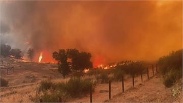 燒掉一個南投縣! 加州野火肆虐「聯邦級災難 」