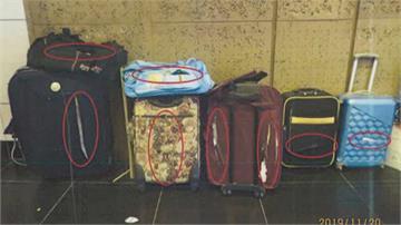 拖不動...7行李箱連環鎖放北車大廳 清潔員斷鎖鍊卻割破「無奈挨告」