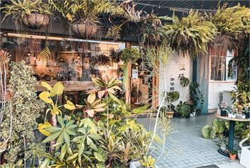 不只彰化田尾!精選中部7家「觀葉植物迷」必逛咖啡廳、早午餐