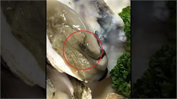 吃烤生蠔驚見有小螃蟹在爬 消費者傻眼PO網