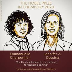 快新聞/諾貝爾化學獎出爐 英美2學者研究研發出基因組編輯獲得殊榮