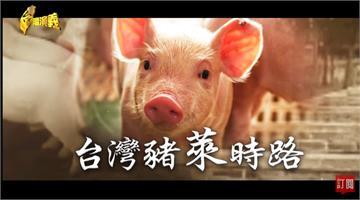 台灣演義/萊豬元旦開放進口 中央地方雙管追蹤稽查|2020.12