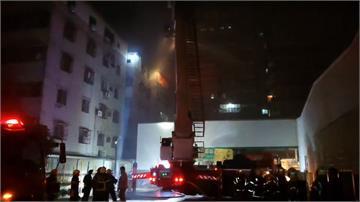 台南永康民宅火警 40名住戶逃難 5隻寵物貓搶救不及遭燒死!