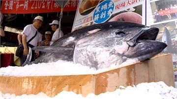 台灣漁業利益最大化 黑鮪魚配額換大目鮪1年