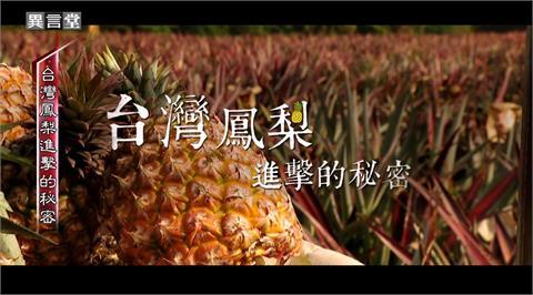 異言堂/台灣鳳梨進擊的秘密!「鳳梨之父」張清勤的故事
