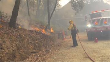 美加州森林野火 延燒面積達2/3北市大