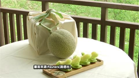 馬國栽種日本哈密瓜 要聽古典樂定期按摩