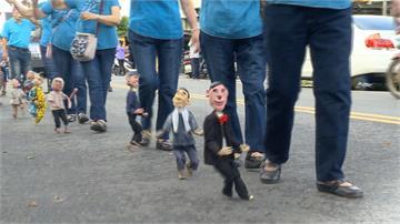 東石海之夏熱鬧踩街 彷彿嘉年華盛會