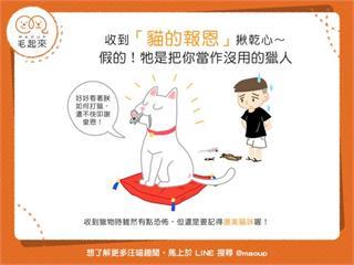【貓貓真心話】貓咪帶來小禮物?難道真的是「貓的報恩」?!|寵物愛很大