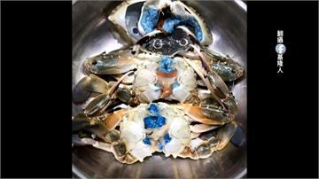 「阿凡達螃蟹」看過嗎?專家提醒勿隨意食用
