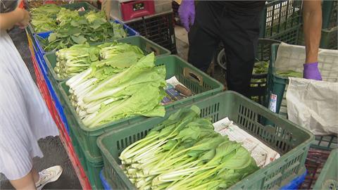連老闆都說貴! 蔬菜翻倍漲 巴掌大絲瓜要50元
