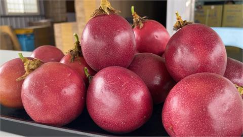 萬巒百香果  產季比埔里早三個月