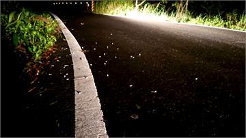 貨車螺絲狂撒10公里山路  警暗夜狂掃2小時才清光