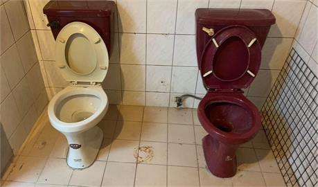 上廁所也要「情侶雅座」?房仲曬「雙馬桶」裝潢 網嗨:要臭一起臭