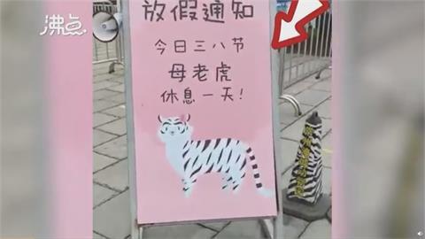 三八婦女節  中國動物園母老虎也放假1天