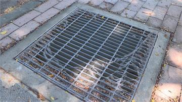 高雄多地水溝蓋細紗網破損 登革熱防疫漏洞?