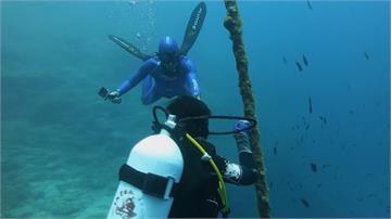 希臘解封潛水客回來了!業者:隔絕病毒的最佳選擇
