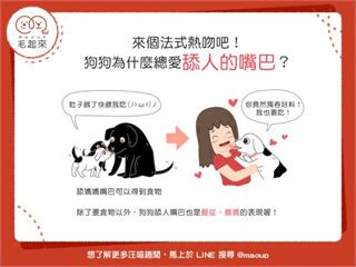 【狗狗行為學】來個法式熱吻吧!狗狗為什麼總愛舔人的嘴巴?|寵物愛很大